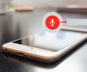 voice integreren